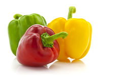 Colored paprika (pepper) Stock Photography
