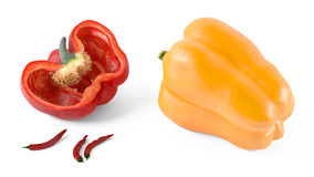 Colored paprika pepper  Stock Images