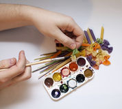 Colored pasta painted in different color brush. Draw Stock Photos