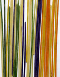 Colored pasta painted in different color. Food Stock Photos