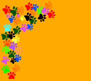 Colored pawprints on  orange background Stock Images