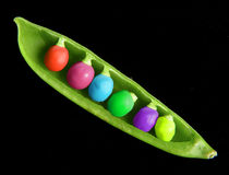 Colored Peapod Royalty Free Stock Photo