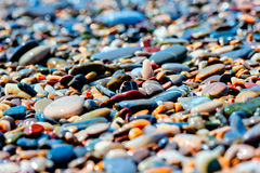 Colored pebbles on the beach Royalty Free Stock Photos