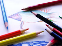 Colored pencil.  Royalty Free Stock Image