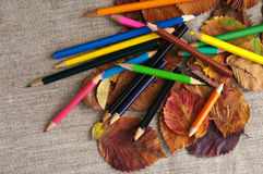 Colored pencils on autumn leaves Royalty Free Stock Photo