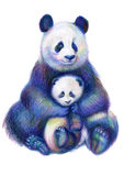Colored pencils drawing rainbow panda bears family stock illustration