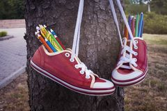 Colored pencils . Red retro sneakers with loose braids on a wooden background . For children . to draw in the park . footwear on laces stock image