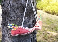 Colored pencils . Red retro sneakers with loose braids on a wooden background . For children . to draw in the park . footwear on laces stock images