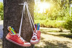 Colored pencils . Red retro sneakers with loose braids on a wooden background . For children . to draw in the park . footwear on laces royalty free stock images