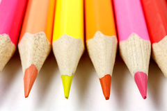 Colored pencils on a white background closeup, front view Royalty Free Stock Photography