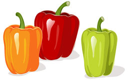 Colored pepper. Isolated on a white background Stock Images