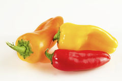 Colored peppers Royalty Free Stock Image