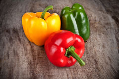 Colored peppers Stock Image