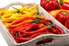 Colored peppers Royalty Free Stock Photography