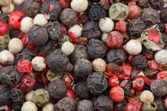 Colored peppers mix. Red, black, green and white pepper. Spice. royalty free stock photos
