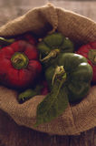 Colored peppers in sack Stock Image