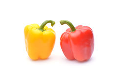 Colored peppers on white background. Fresh Royalty Free Stock Image
