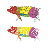 Colored pig parts. Vector illustration of isolated funny pig made from colored words describing parts Royalty Free Stock Photos