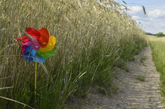 Colored pinwheel. On walking holidays, vacation time Royalty Free Stock Image