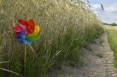 Colored pinwheel. On walking holidays, vacation time royalty free stock image