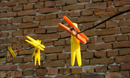 Colored plastic clothespins. On clothes line Royalty Free Stock Image