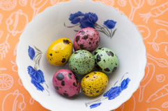 Colored quail eggs on a plate stock photos
