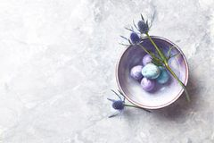 Colored quail eggs and sea holly flowers in a ceramic bowl flat lay arrangement. Top view. Copy space stock photography