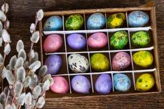 Colored quail eggs stock image