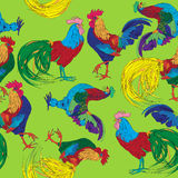 Colored roosters pattern Royalty Free Stock Images