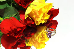 Colored rose and ring Stock Image