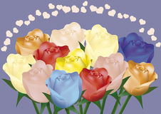 Colored roses. For love, greeting card, Valentine, colors, flowers, wedding Stock Photos