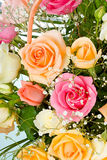 Colored roses in basket Stock Images