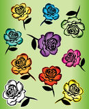 Colored roses design illustration Royalty Free Stock Photo