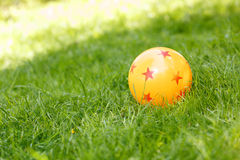 Colored rubber ball lying on grass Stock Images