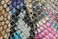 Colored samples of Genuine leather in a different colors. Texture close-up, embossed under the skin reptile. Colored samples of Genuine leather in a variety of Stock Image