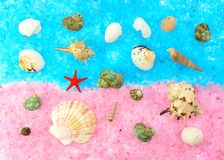 Colored seashells on a pink and blue sea salt Royalty Free Stock Photo