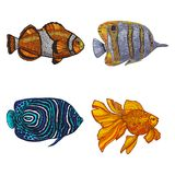 Colored Set of Fish in Hand-Drawn Style. Colored Set of Fish. Collection of Sea Design Elements in Hand Drawn Graphic Style. Vector Illustration of Clown Fish Stock Photos