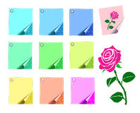 Colored sheets of paper and a rose  Isolated Royalty Free Stock Images