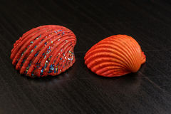 Colored shells Stock Photography