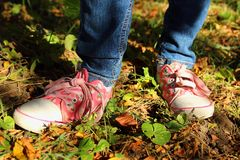 Colored shoes on the feet Stock Photography