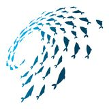 Colored silhouettes school of fish. A group of silhouette fish swim in a circle. Marine life. Vector illustration. Logo. Colored silhouettes school of fish. A Royalty Free Stock Photo