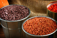 Sowing seeds. Colored  sowing seeds in metal bucket close up Royalty Free Stock Images
