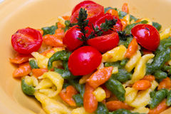 Colored spatzle on yellow dish. Some colored spatzle on yellow dish Stock Image