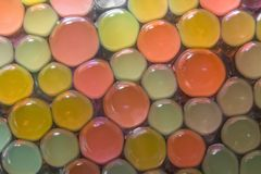 Colored spheres. Background with transparent colored beads closeup Stock Photos