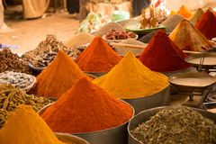 Colored spices Stock Photography