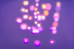 Colored spots Stock Photography
