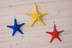 Colored starfish Stock Image