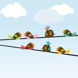 Colored stylized birds Royalty Free Stock Photo