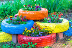 Colored Tires Royalty Free Stock Images