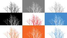 8 Colored tree branches Royalty Free Stock Photos